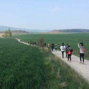 Excursión por el Camino de Santiago